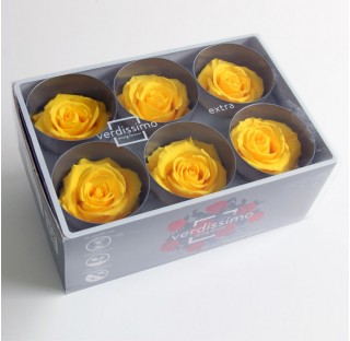 6 Roses Extra Bright Yellow